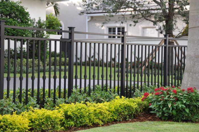 Fences 003